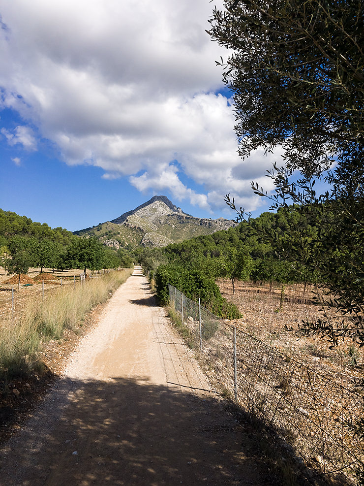 Mallorca im Herbst September Oktober November Wandern Baden Warme Temperaturen