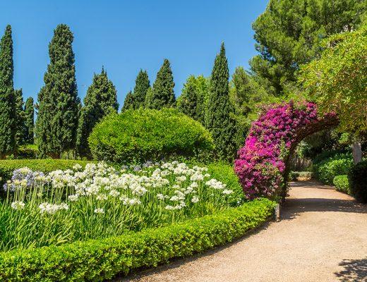 Mallorca Marivent Gärten in Cala Major Kunst Kultur Pflanzen im königlicher Palast Joan Miro alle Infos